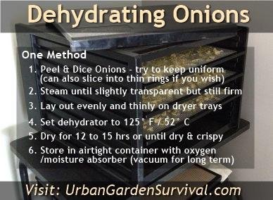Dehydrating Fresh Food